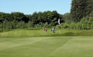 Garcia Golfbil fotoserie 18