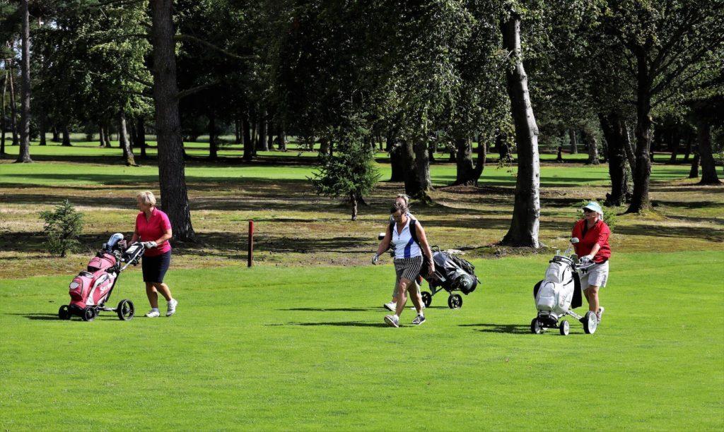 Mariagerfjord Golfklub Golf Gourmet 1