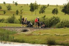 De 3 golfbaner i golf og gourmetsamarbejdet har alle unikke golfhuller - Her hul 9 på Hobro golfbane, hvor spillerne skal over flere stenbroer før de kommer til green.