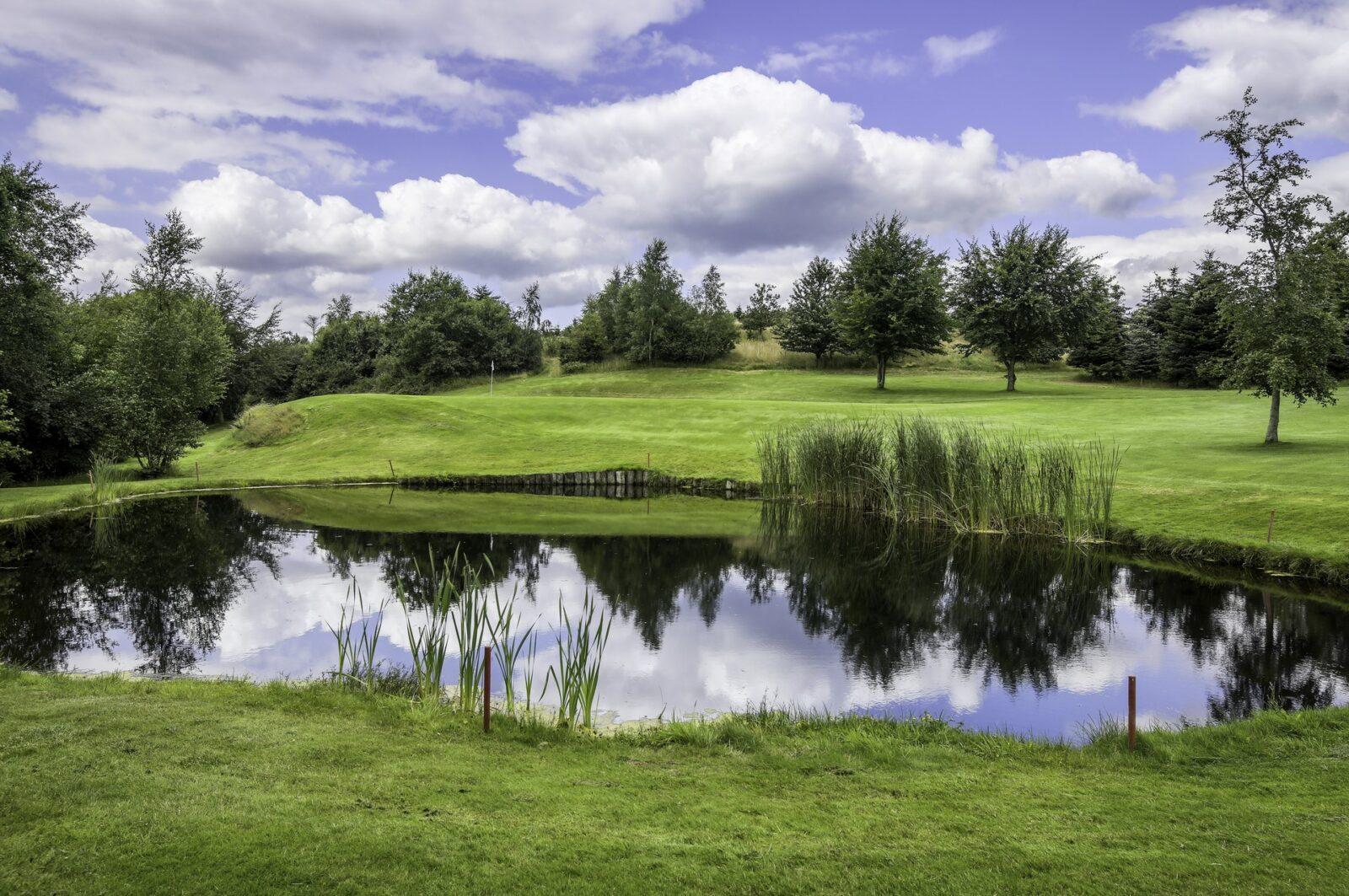 Gol Gourmet.dk Mariagerfjord Golfklub HDR foto 12